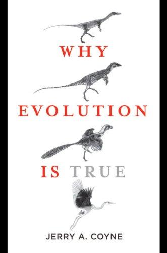 Warum Evolution wahr ist